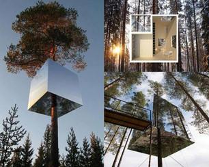 Kućice na stablu