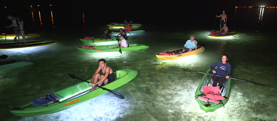 Must Do In Key West - 7 of the Best Things to Do In Key West