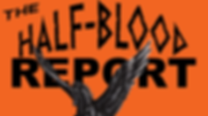 hbreportlogowd.png