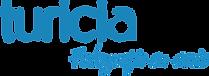 Turicia-Logo-300x109.png