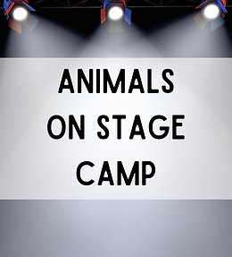 Animals on Stage Camp
