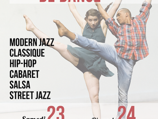 STAGE NATIONAL DE DANSE : JANVIER 2016