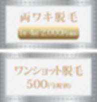 両ワキ-ワンショット.jpg
