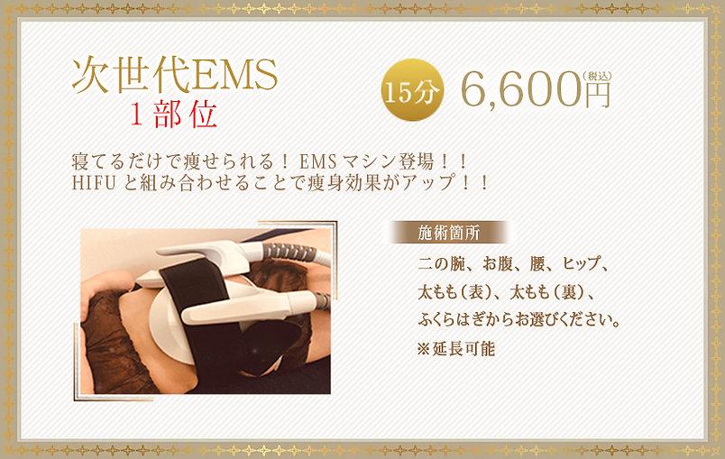 EMS-price.jpg