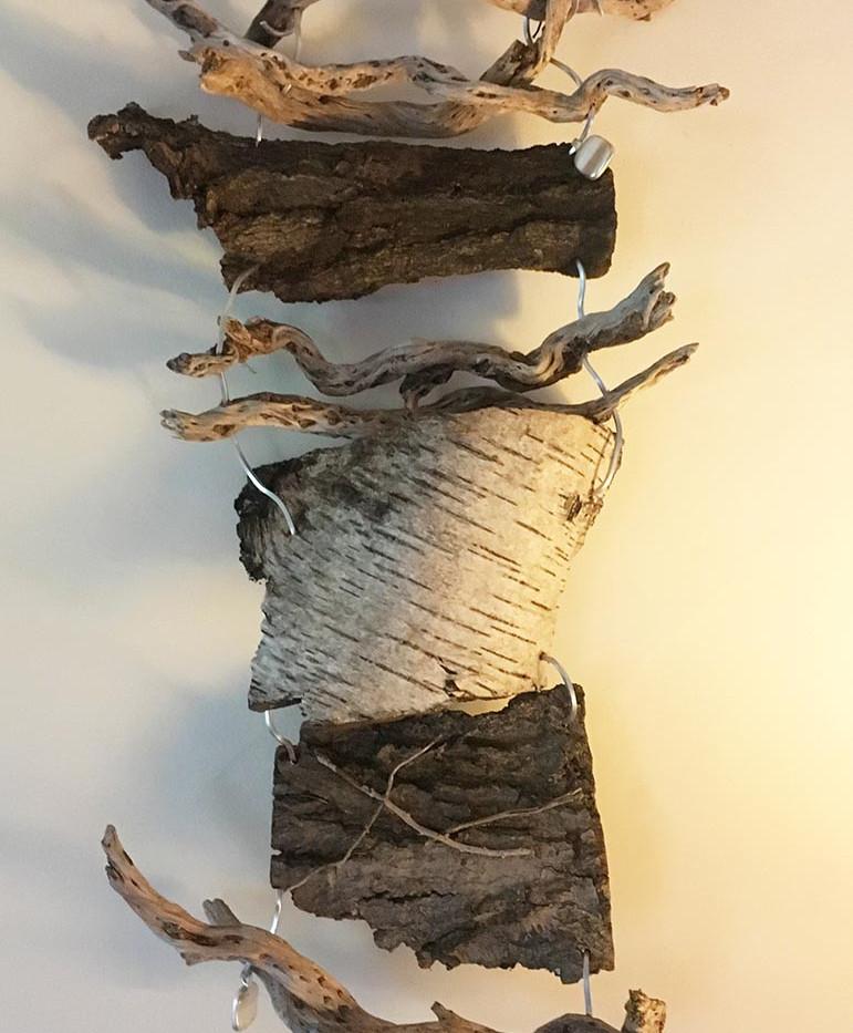 Hung bark 1