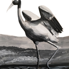 Sarus Crane.png