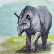 Tapir Sweet 16