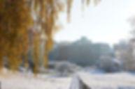 Weiß-goldener Herbst rund um Ströhs Hobbersdorfer Mühle
