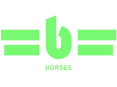 4-3-horses.jpg