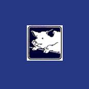 Holstenstolz Schweinefutter