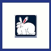 Holstenstolz Kaninchenfutter