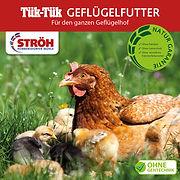 200330_Broschüre_TükTük_21x21_Bilder.jpg