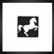 Holstenstolz Pferdefutter