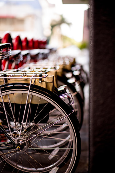 Bicycles at Line Digital Download