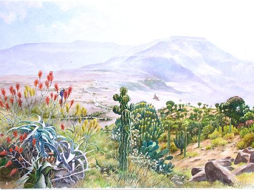 The King's Road to Magdala