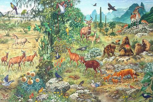 Ethiopian Endemic Wildlife