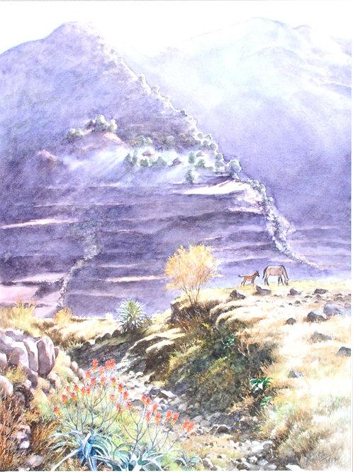 Ethiopian Highlands Scene