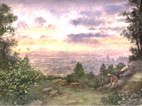 Entoto Natural Park No. 4 - Print