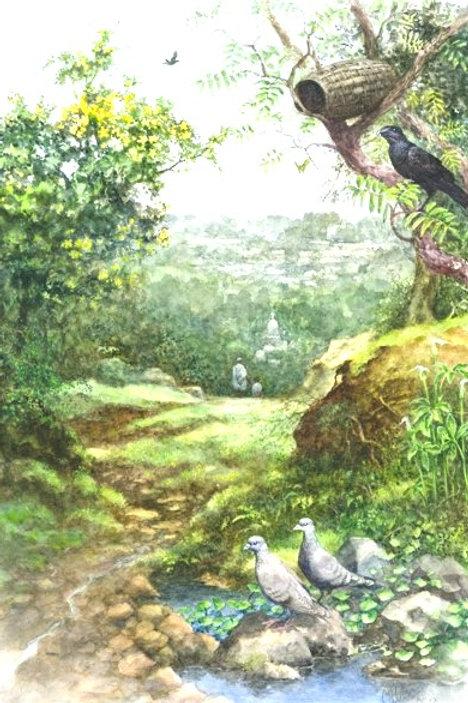 Entoto Natural Park No. 1 - Print