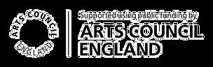 arts council logo[1026]_edited.png
