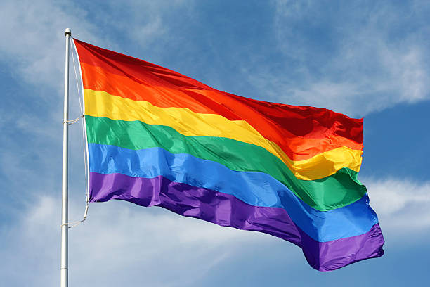 ST. PETERSBURG HOSTS THE LARGEST GAY PRIDE PARADE IN FLORIDA THIS WEEKEND…