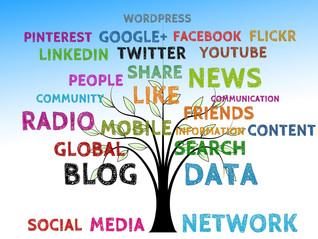 Why do you need an internet marketing consultant like Ava Sakowski?