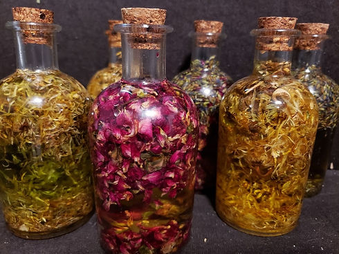 botanical infused body oils 1.jpg