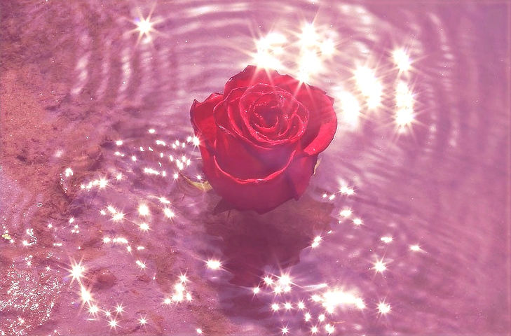 rose-water_edited.jpg