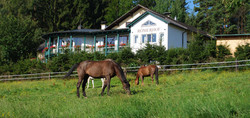 Koppel mit Pension Römerhof
