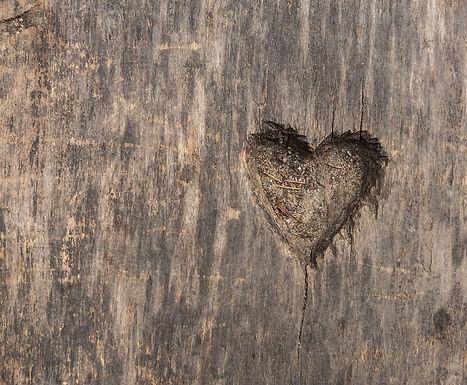 Herz der Riesealm