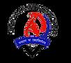 Dhamdhama_College_logo.png