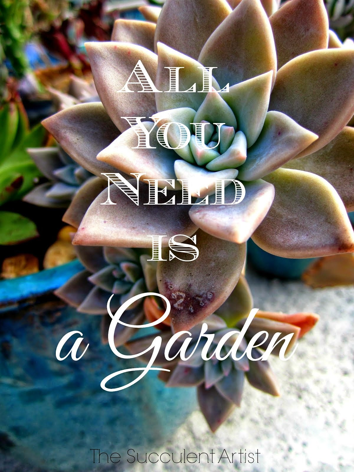 All You Need is a Garden - All You Need is Love - I LOVE Succulents photo - Succulents and cacti oh