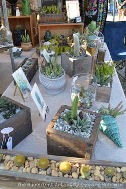 Custom Garden Planters by Inspire Bohemia - The Succulent Artist Collection - succulents cactus cact