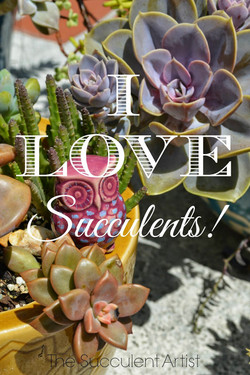 I LOVE Succulents photo - photography by Catherine of Inspire Bohemia and The Succulent Artist - www