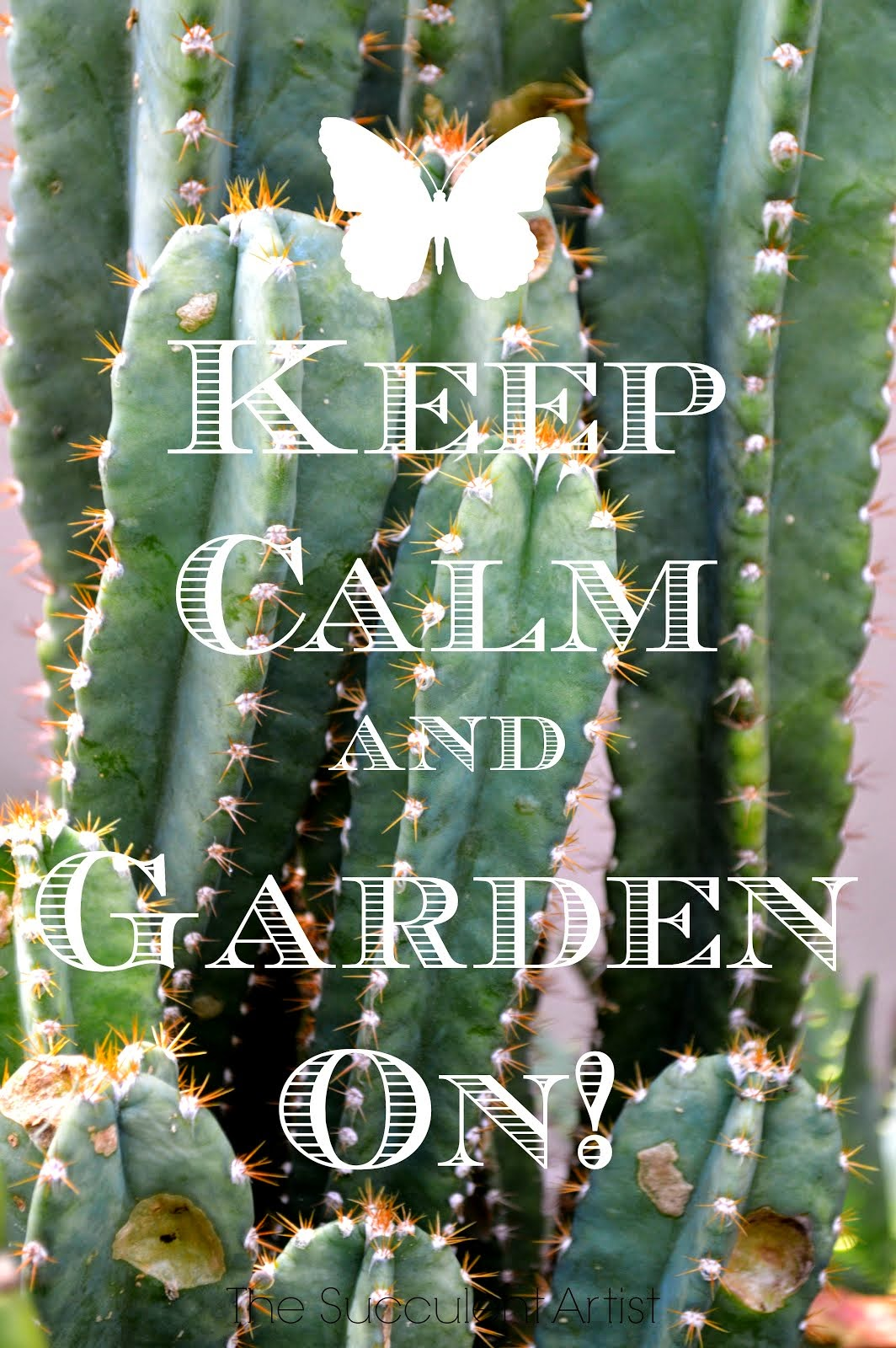 Keep Calm and Garden On! - I LOVE Succulents photo - Succulents and cacti oh my!- photography by Cat
