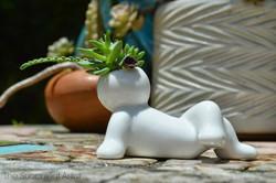 Mini People Planters 5- succulent planter - cactus planter - cacti - succulents - planters - gardeni