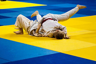 Judo Fighting