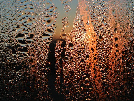 Is Condensation And Mould A Sore Subject In Your Tenancy?