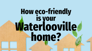 How Eco-friendly are Waterlooville Homes?