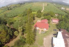 Baptême de l'air Guadeloupe Basse Terre, plantation grand café en guadeloupe