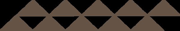 Pentair logo transparentni braon.png