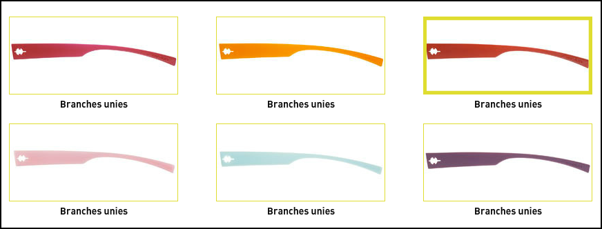 EVOLUNbranches18.png