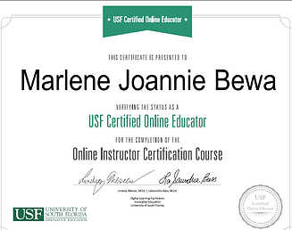 Online instruction certificate2.PNG