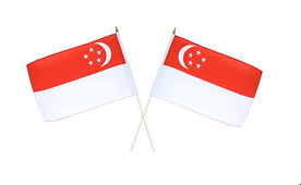 singapour 2.PNG