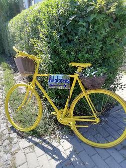kerékpár 2.jpg