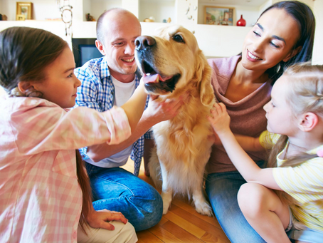 How Pets Can Help You Cope During COVID-19