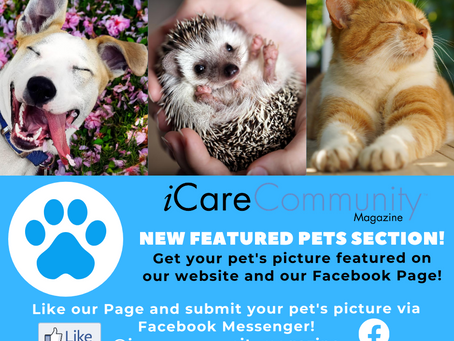 New iCare Community Featured Pets Page!