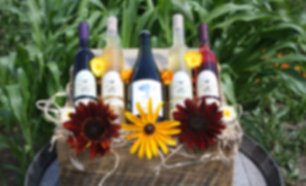 wine-trails-picture.jpg
