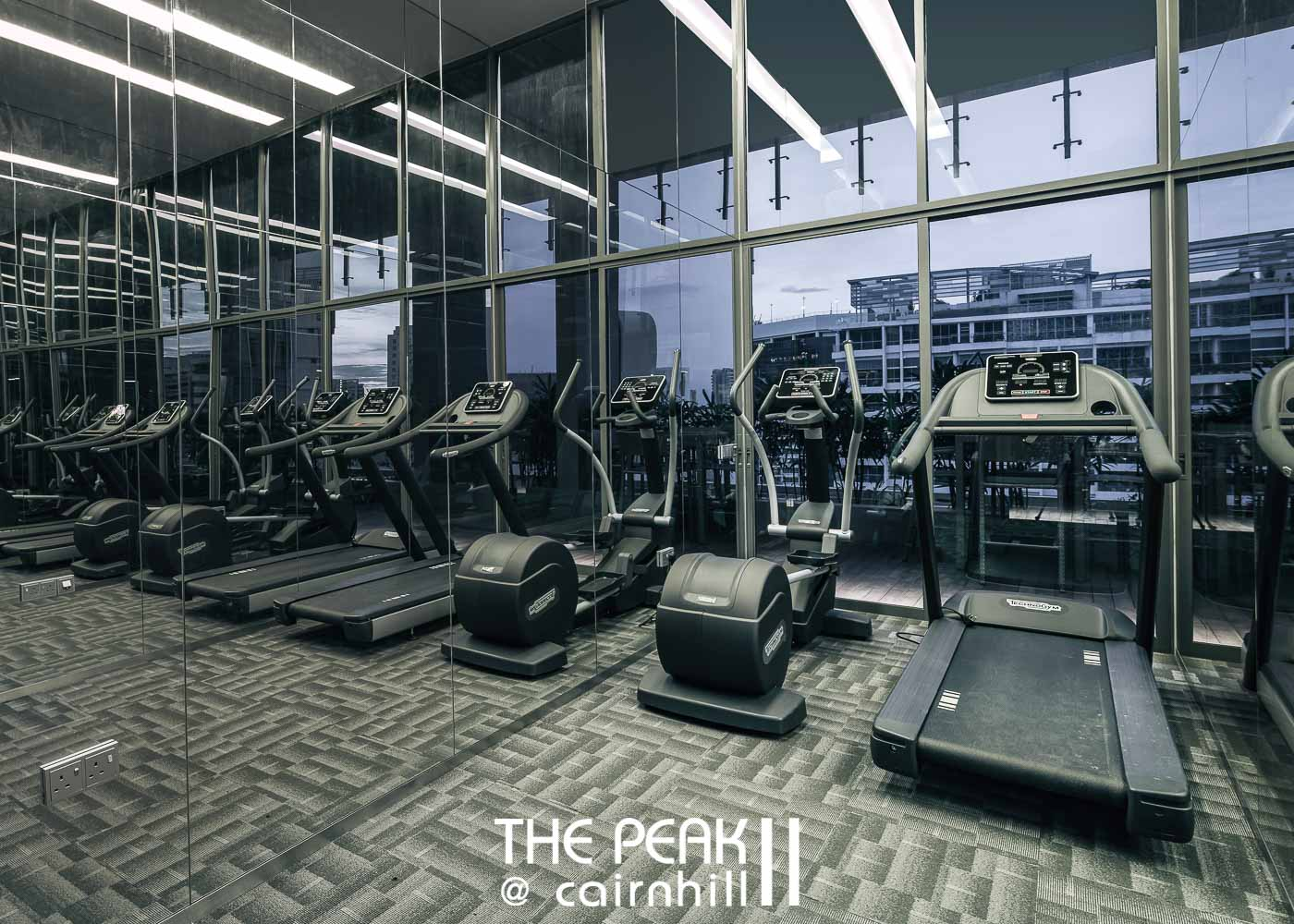 The Peak @ Cairnhill II gym