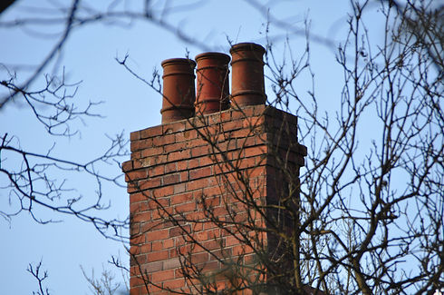 Chimney stack behind branches